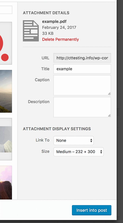 PDF settings and insert buton