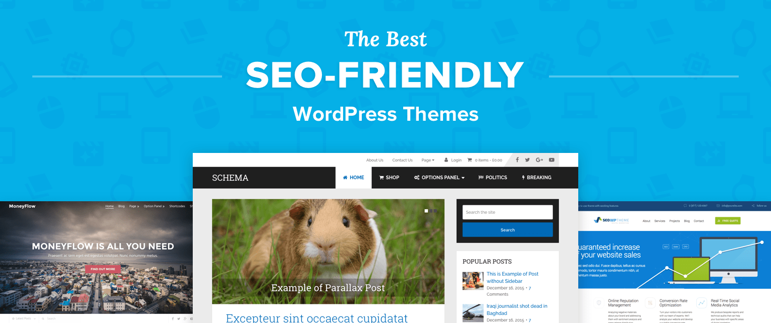 SEO Wordpress Themes
