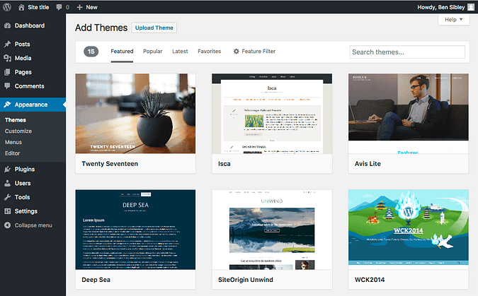 Screenshot of the themes menu in the WordPress dashboard