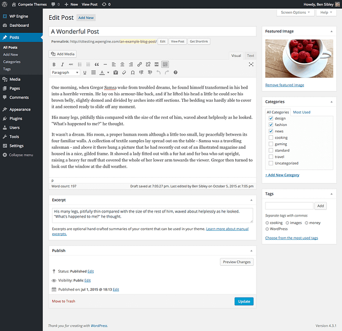 screenshot of wordpress post editor