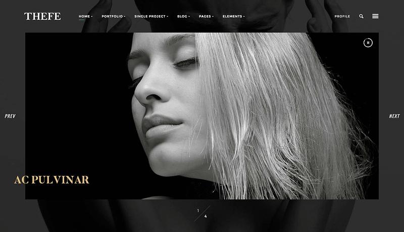 Thefe portfolio WordPress theme