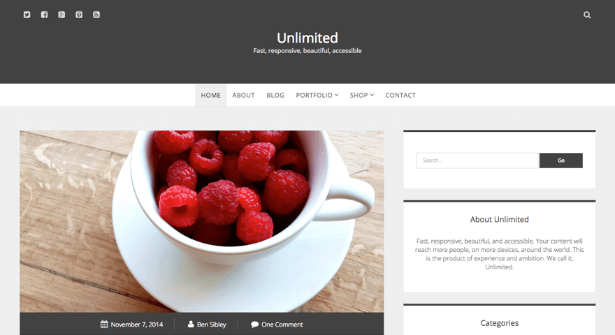 Unlimited WordPress theme