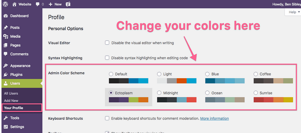 Custom Admin Color Scheme