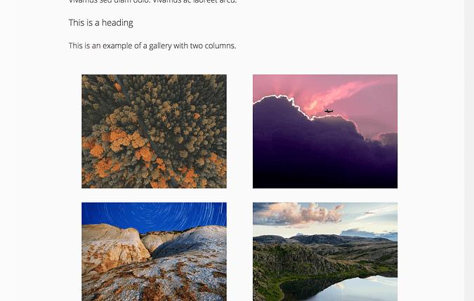 Screenshot of an example gallery
