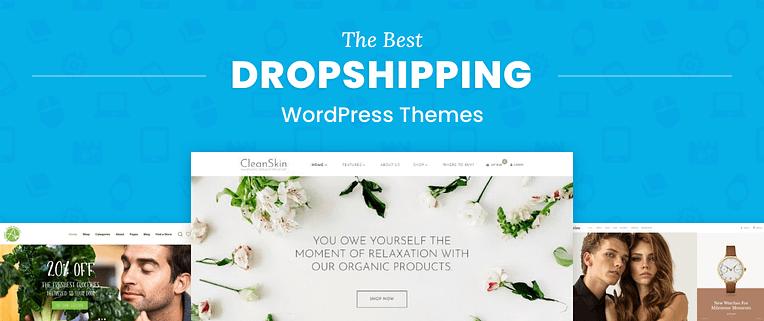 Dropshipping WordPress Themes