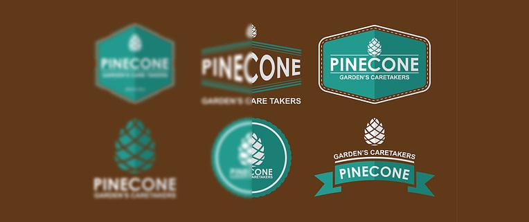 Fix blurry and pixelated logo in WordPress