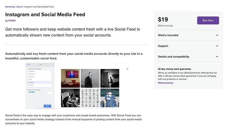 Instagram & Social Media Feed