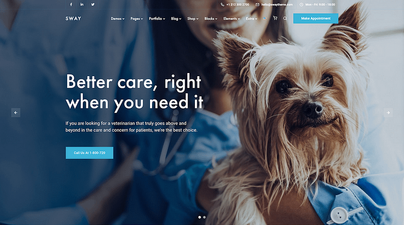 Sway veterinary template