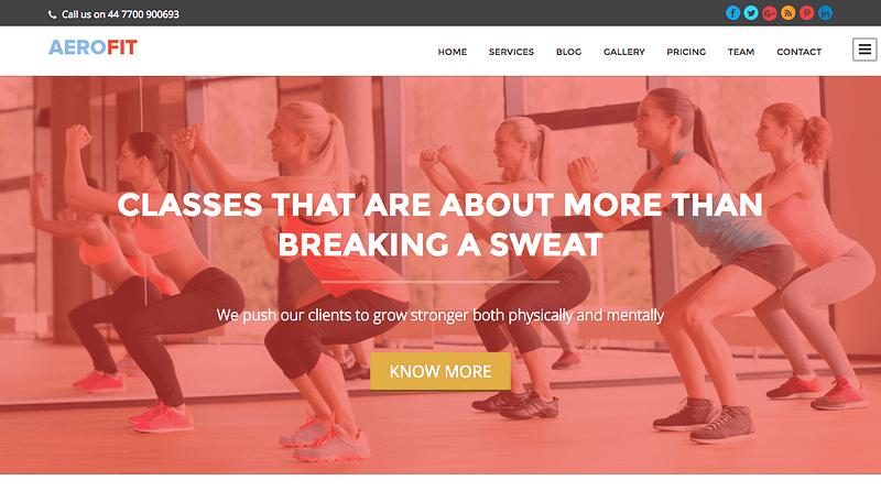 Aerofit fitness WordPress theme