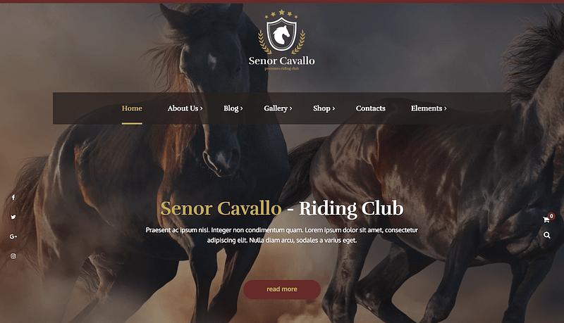 Senor Cavallo