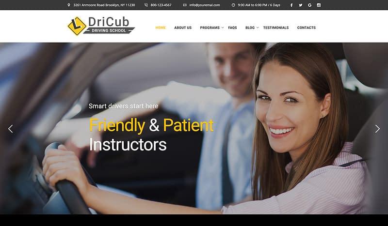 DriCub
