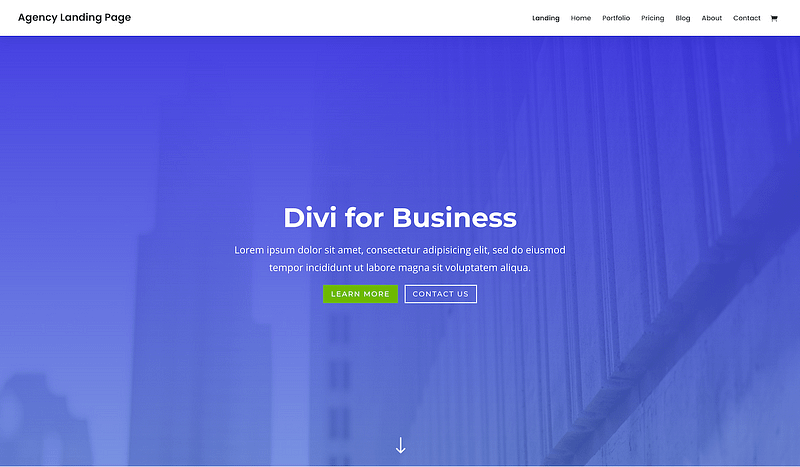 Divi business template