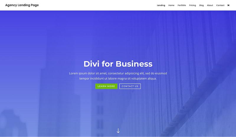 Divi business template