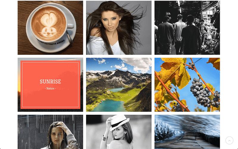 Portfolio Theme Gallery