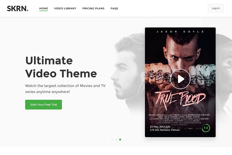 SKRN theme homepage