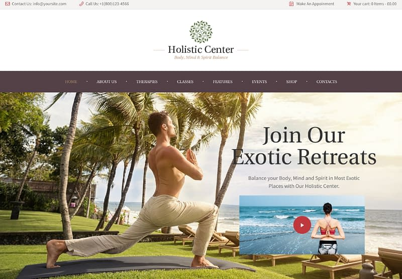 Holistic Center WP theme