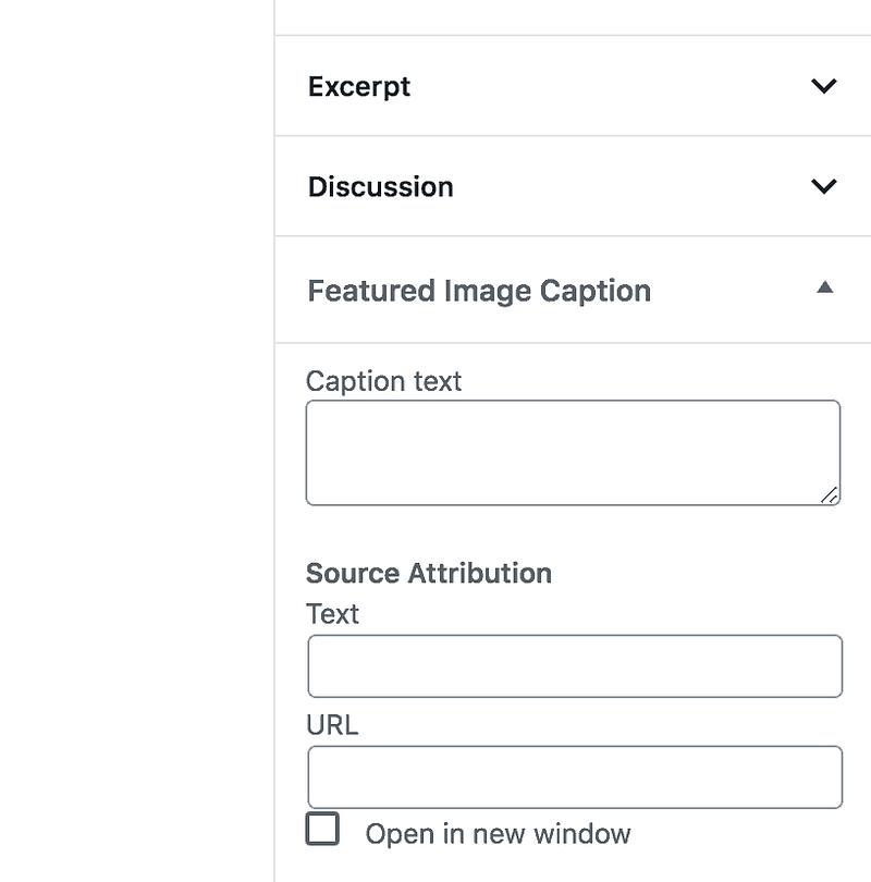 Featured Image Caption Box
