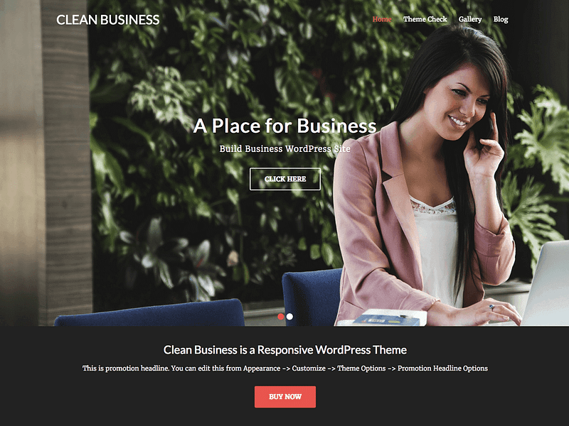 Clean Business