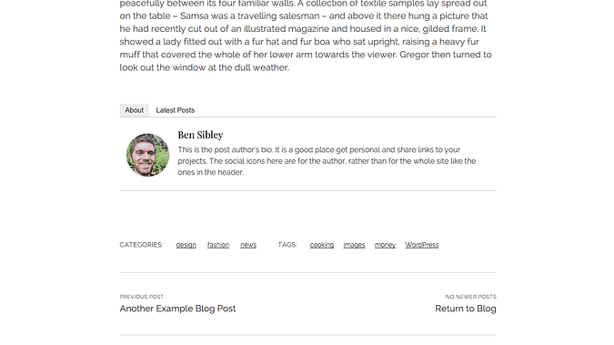 screenshot of the author info added by Starbox