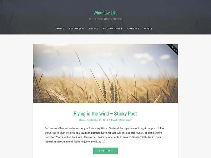 screenshot of the Windflaw Lite theme