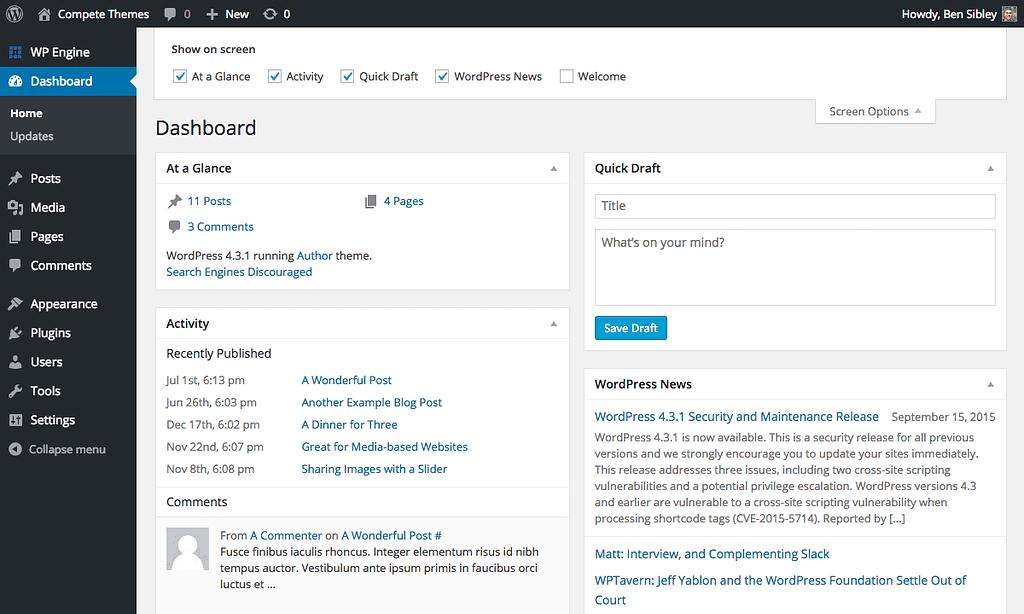 Screenshot of the Screen Options tab opened in the WordPress admin dashboard