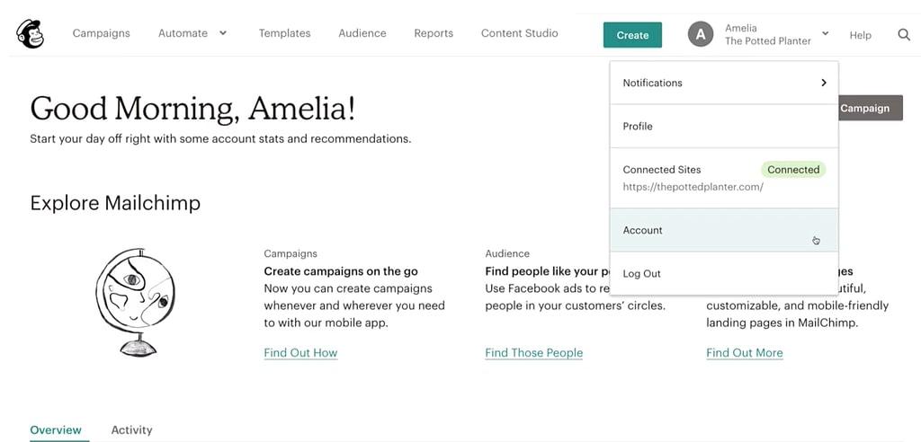 Mailchimp Visit Account