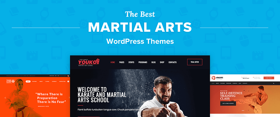 Mobile Friendly Responsive Website Business For Sale MARTIAL ARTS STORE