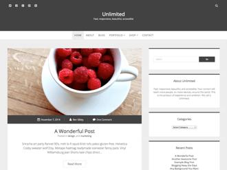 Unlimited WordPress theme