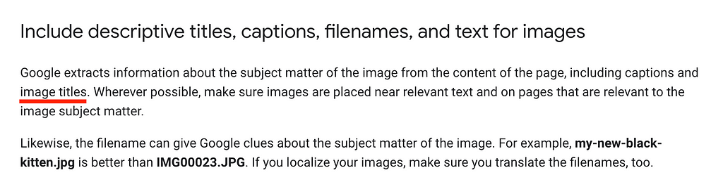 Another screenshot from Google's guidelines