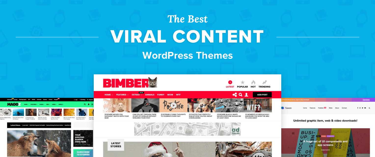 Best Viral WordPress Themes