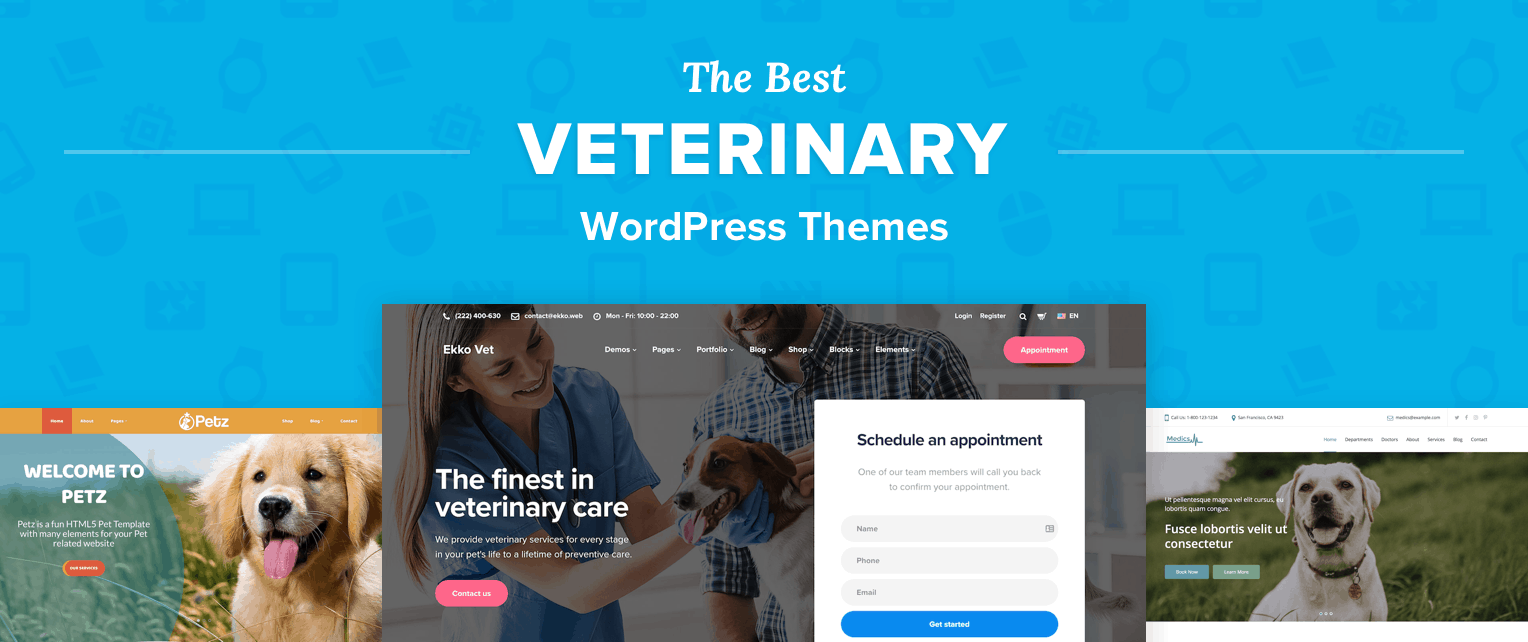Best Veterinary WordPress Themes