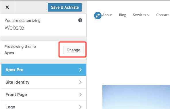 button for changing themes in the Customizer