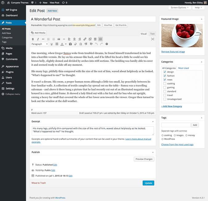 screenshot of wordpress post editor