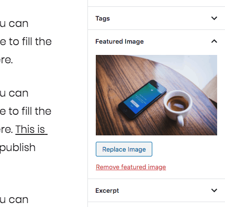 Featured Image Option